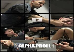 video PigProd – Alpha Proll 1