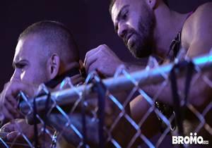 Bromo – Lorenzo Flexx & Ricky Larkin – Pups Part 3