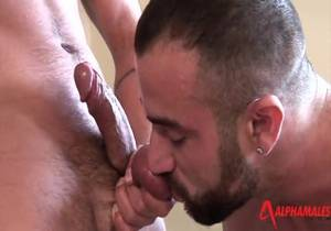 AlphaMales – Spencer Reed, Dominic Pacifico And Billy Baval