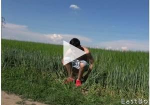 Outdoor Fun – Carlos Costa